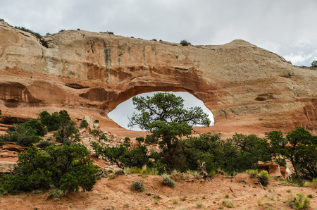 wilson: Wilson Arch was named after Joe Wilson, a local pioneer who had a cabin nearby in Dry Valley, San Juan County, Utah.  This formation is known as entrada sandstone.