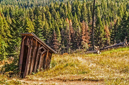 Abandoned outhouse in a meadow near a forest looks like it is sinking