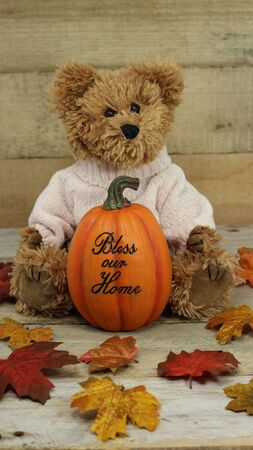 stuffed teddy bear wearing pink sweater sitting with a pumpkin with bless our home message on a wood background