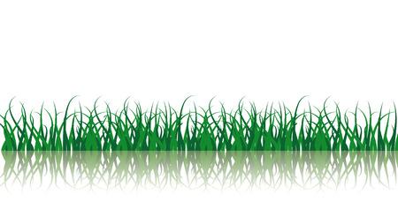 Vector Grass Illustration Vector
