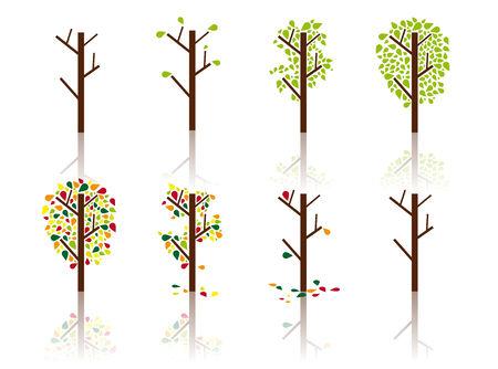 till: A process of a tree from spring till winter, different seasons