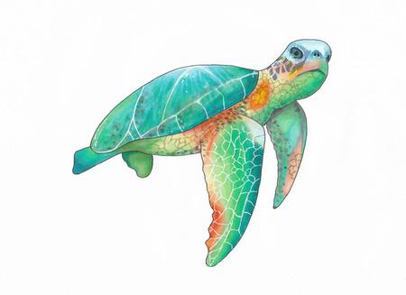 Illustration d'une tortue de mer colorée nageant avec des marqueurs Banque d'images - 105013722