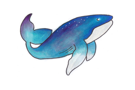Watercolor blue whale fish isolated on a white background swimming Stock Photo