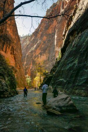 Narrows river side walk Zion Canyon