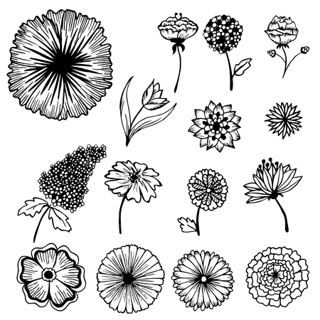 Collection of hand painted flowers background concept. Vector illustration design