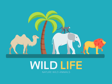 Wild life in flat design background concept. lives of animals in the wild nature. Icons for your product or illustration, web and mobile applications Çizim