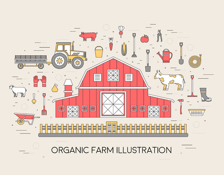 vegetable garden: Organic farm in village set and tile in thin lines style design. instruments, flower, vegetables, fruits, hay, farm building, animals, tractor, tools, clothing. Vector illustrations background concept