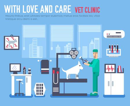 disease carrier: Medical vet clinic. Veterinarian icon. Veterinarian illustration. Veterinarian vector. Veterinarian elements. Veterinarian image. Veterinarian picture. Veterinarian background. Veterinarian hospital.