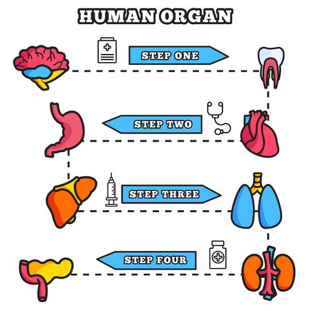 olfaction: Human organ thin line illustration concept set design Illustration