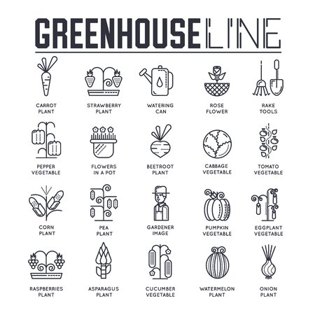 Gardener watering plants in greenhouse vector outline icons. Person with watering pot taking care of vegetables growing in hothouse thin line illustration.