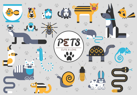 Pets flat illustration concept. Wildlife and home zoo animals vector design icons.