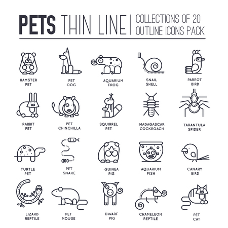 Animal flat thin line illustration icons set. Outline cute home pets on isolated background. Different collection domestic wildlife objects concept design Stock Illustratie