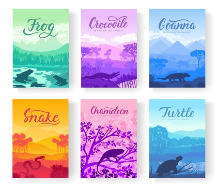 Brochures with varieties of reptiles. Animals in their habitat. Flyers with wild animals in nature. Template of magazines, poster, book cover, banners. Landscape invitation