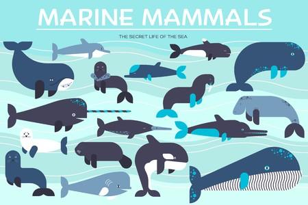 Sea mammals animal collection icons set. Vector fish illustration in ocean life background. Marine exotic creature flat design. Stock Illustratie
