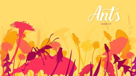 Silhouette ant creeps along the blade of grass in the bushes background. Life of insects in the wild illustration. Beauty macro world