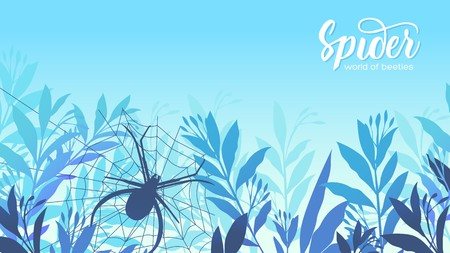 A spider weaves a web in the grass. Life of insects in the wild illustration. Beauty acro world