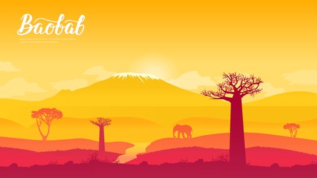 Baobab-Baum in Namibia, Afrika Land Page Wallpapers Design-Konzept. Sonnenaufgang über der Savanne und den Grasfeldern im zentralen Krüger-Nationalpark in Südafrika Vektorgrafik