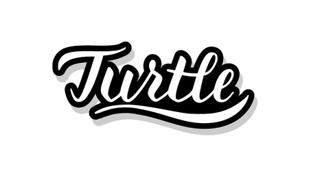Turtle calligraphy template text for your design illustration concept. Handwritten lettering title vector words on white isolated