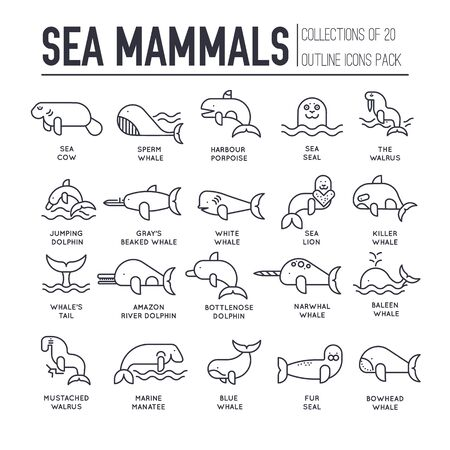 Set of sea mammals thin line icons, pictograms.
