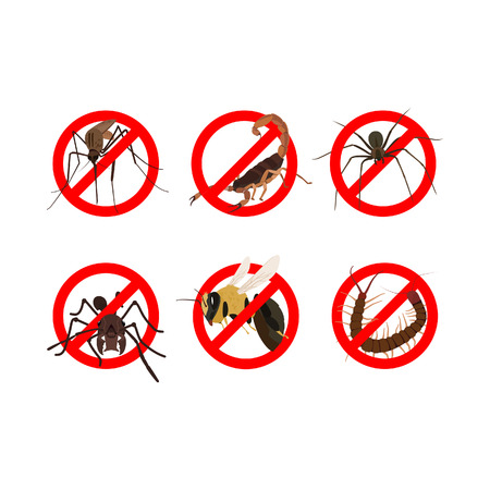 6 dangerous insects such as mosquito, scorpion, spider, ant, bee, centipede