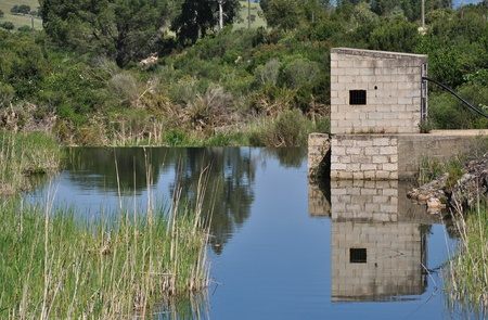 reflects: Water reflects