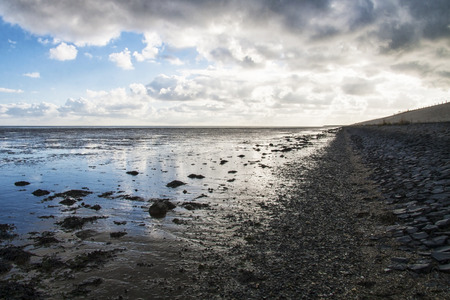 texel: Mudflats in the North of the Netherlands Stock Photo