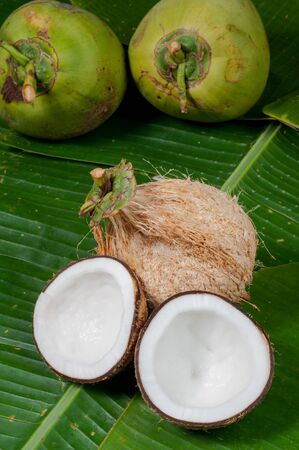 two halfs of coconut  on green background with shadow Stock Photo