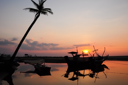 Palm trees silhouette at sunset Thailand photo