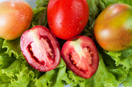 Green vegetables and tomatoes photo