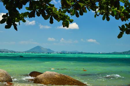 pristine coral reef: Trees rocks sea and a beautiful blue sky