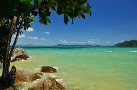 pristine coral reef: Alberi rocce mare e un bel cielo blu
