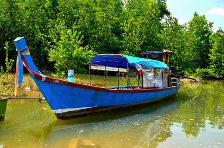 long tailed boat: Long-tailed boat at mangrove forest Stock Photo