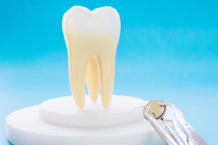 dental tools and tooth model on the blue background