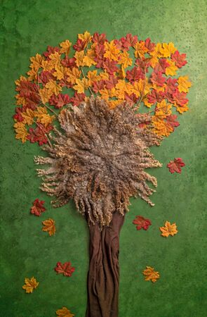 Beautiful Tree Newborn Backdrop Photography with Colored leaves