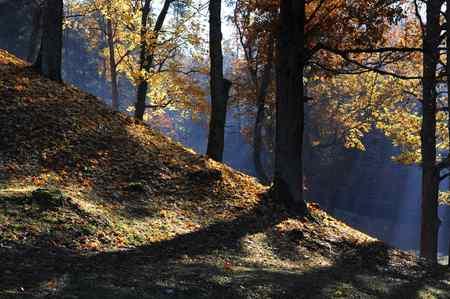 Autumn in Lithuania. Stock Photo