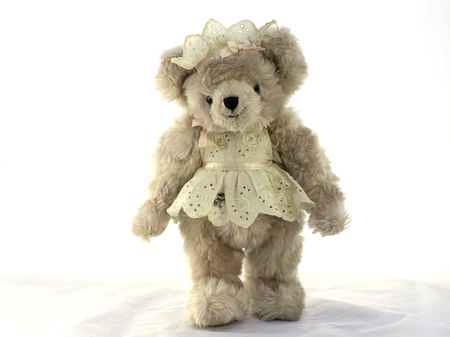 Teddy bear dressed in the Cook  on white background.