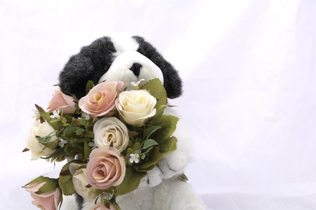 Dog Doll with a bouquet of roses. On a white background