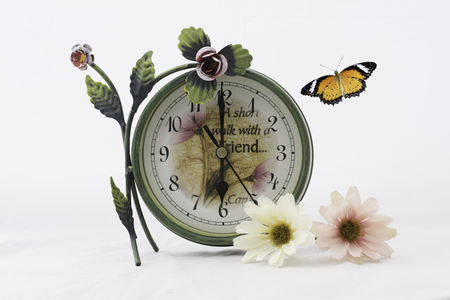 Sepia and antique color tone of Clock and fbutterfly with lowers on white background.