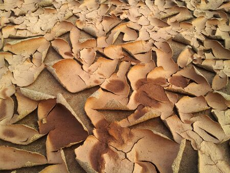 sandy soil: abstract texture for background with cracks and  a peel of sandy soil Stock Photo