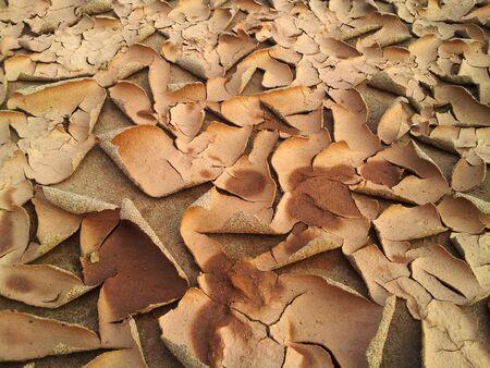 suelo arenoso: textura abstracta para el fondo con grietas y una c�scara de suelo arenoso
