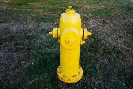 safe water: A yellow fire hydrant  in residential area, Canada