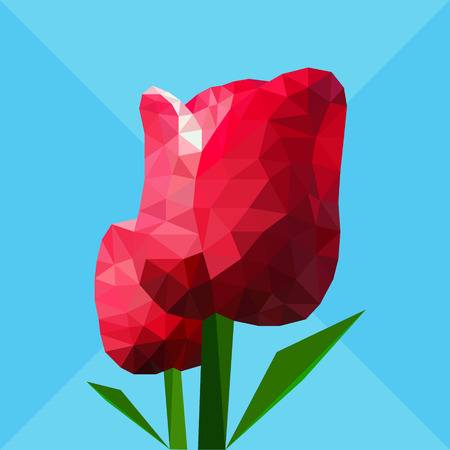 red tulip: Low polygon red tulip flower with green leaf on light blue background Illustration