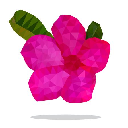 Beautiful hot pink of Desert Rose Flower, Low polygon