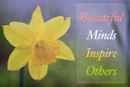 word Beautiful Minds Inspire Others Standard-Bild
