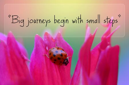sentence: Big journeys begin with small steps