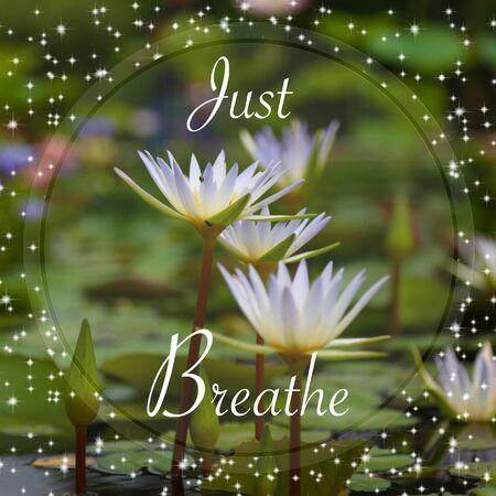 Just breathe words on lotus background Stockfoto