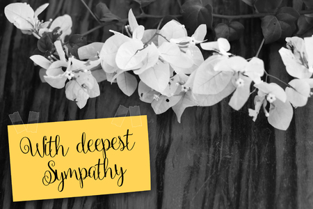 sympathy flowers: With deepest sympathy note with flowers on old wooden background Stock Photo