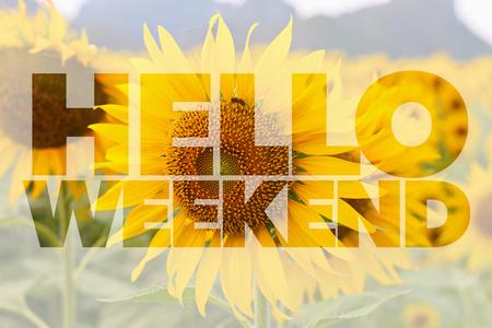 Witam słowo weekend na tle słonecznikowego