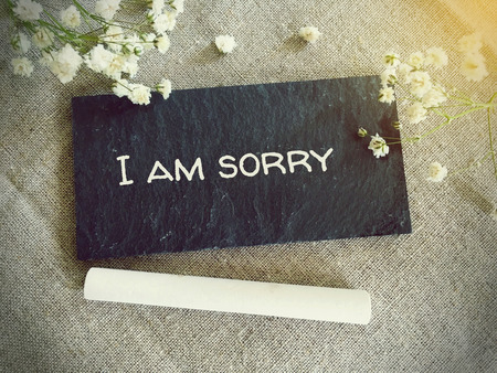 i am sorry: Blackboard for your text and flowers with words I am sorry Stock Photo