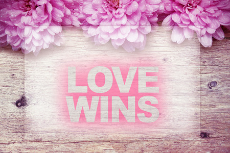 wins: pink flowers on wooden with word LOVE WINS